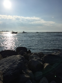 The morning lineup in Orange Beach, AL.
